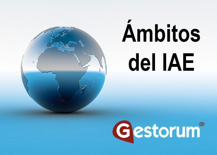 Ambitos del IAE