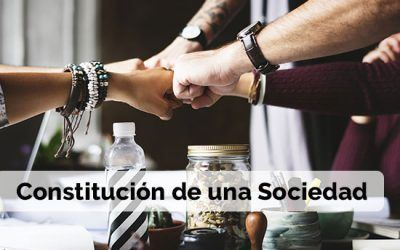 Constitución Sociedad